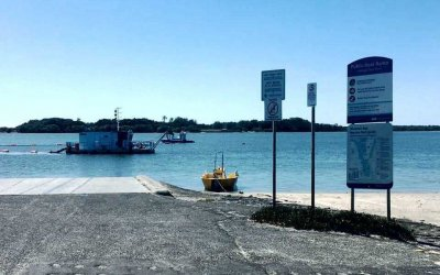 Cabbage Tree Point